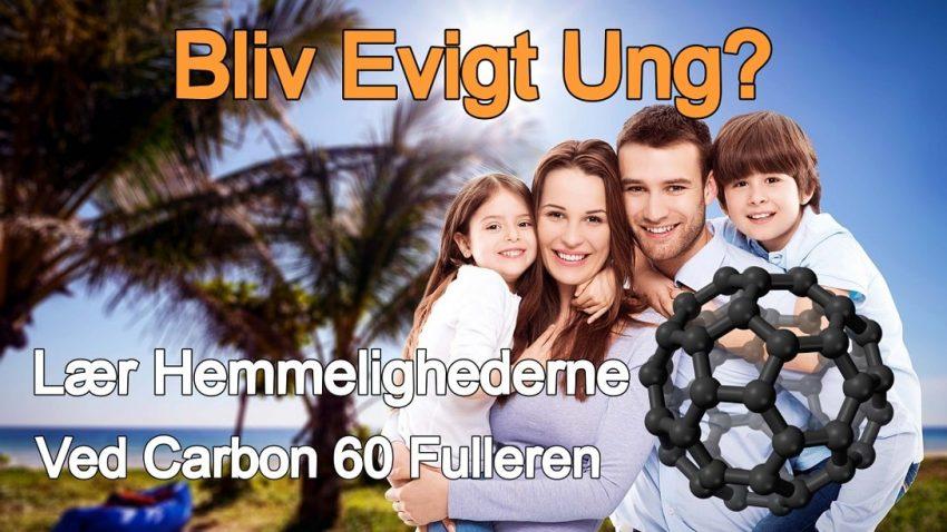 Carbon 60 Fulleren